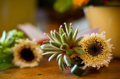 boutonniere, succulent and floral