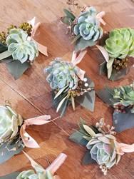 boutonniere, succulents