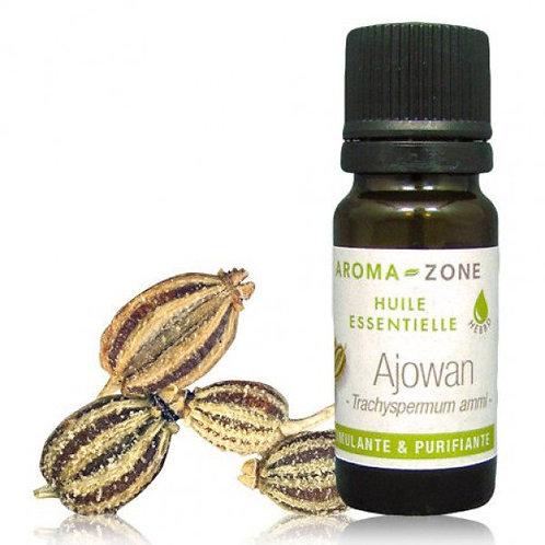 Эфирное масло Ажгон (Trachyspermum ammi)