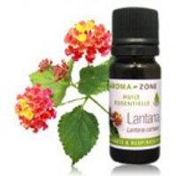 Лантана (Lantana camara) эфирное масло