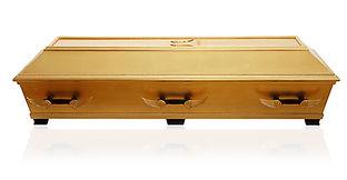 begravningskista guld.jpg