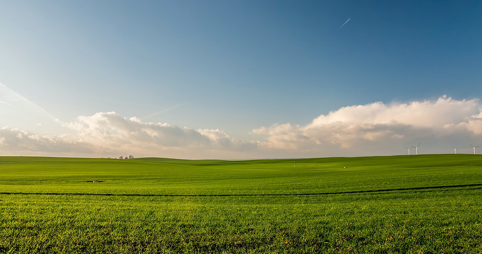 agriculture-countryside-crop-cropland-38