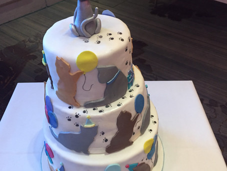 The party cat cake