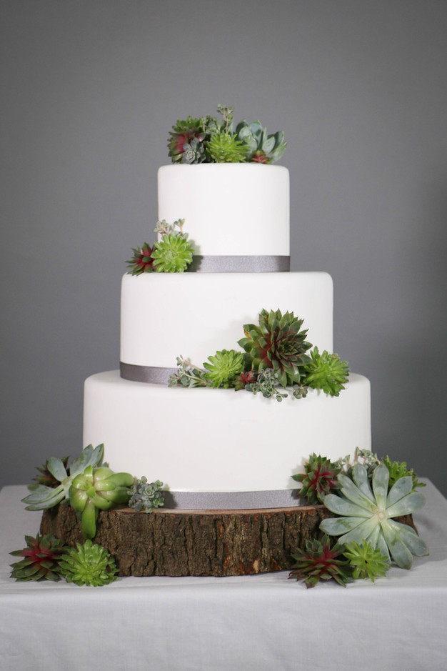 Diy wedding cake stunning succulents thedandelionbakery so what else do you need to know about the diy wedding cake at the dandelion bakery we use the finest quality ingredients and we do not mass produce solutioingenieria Images