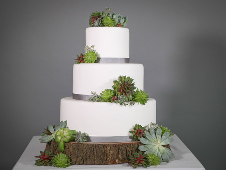 DIY wedding cake: Stunning succulents