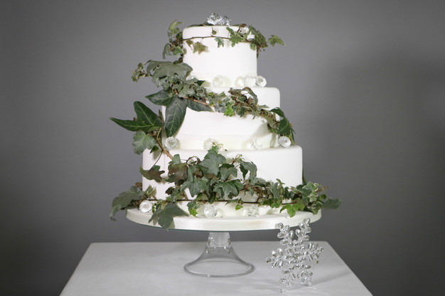 Diy wedding cake ivy and ice thedandelionbakery so what else do you need to know about the diy wedding cake at the dandelion bakery we use the finest quality ingredients and we do not mass produce solutioingenieria Image collections