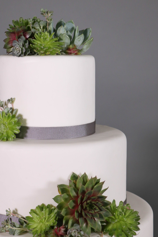 Diy Wedding Cake Stunning Succulents