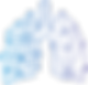 Lung Logo2_edited.png