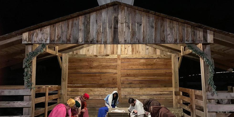 The Bethlehem Experience