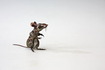 20 Rachel Higgins sculpture Mice (008).J