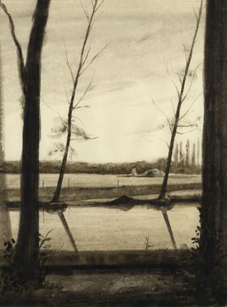 Quatre arbres