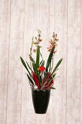 Orchidee Oncidium in Orange mit Übertopf