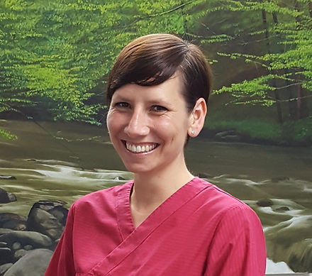 Dr Sibylle Schunemann