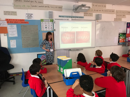 More dental health education for primary school children