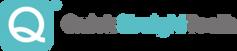 qst-logo-300x65.png