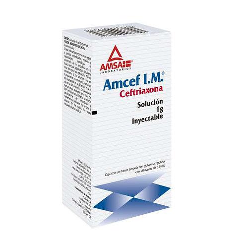 AMCEF  INYECTABLE IM 1G C/1