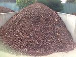 40mm Pine Bark