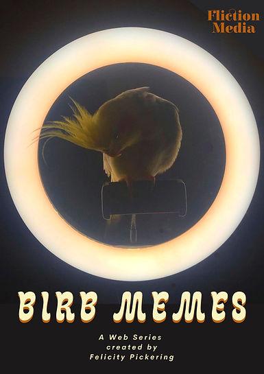 Birb Memes Poster.jpg