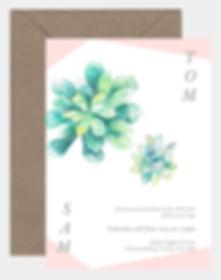 succulent inv.jpg