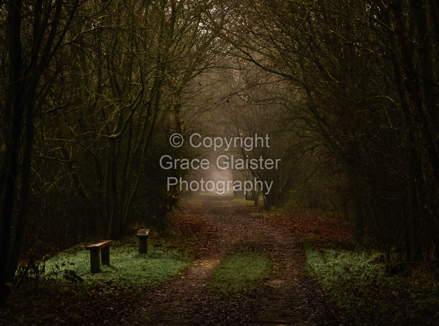 Vanishing Point by Grace Glaister
