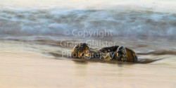 Soft Water West Runton by Grace Glaister