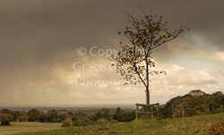 Rain Approaching by Grace Glaister
