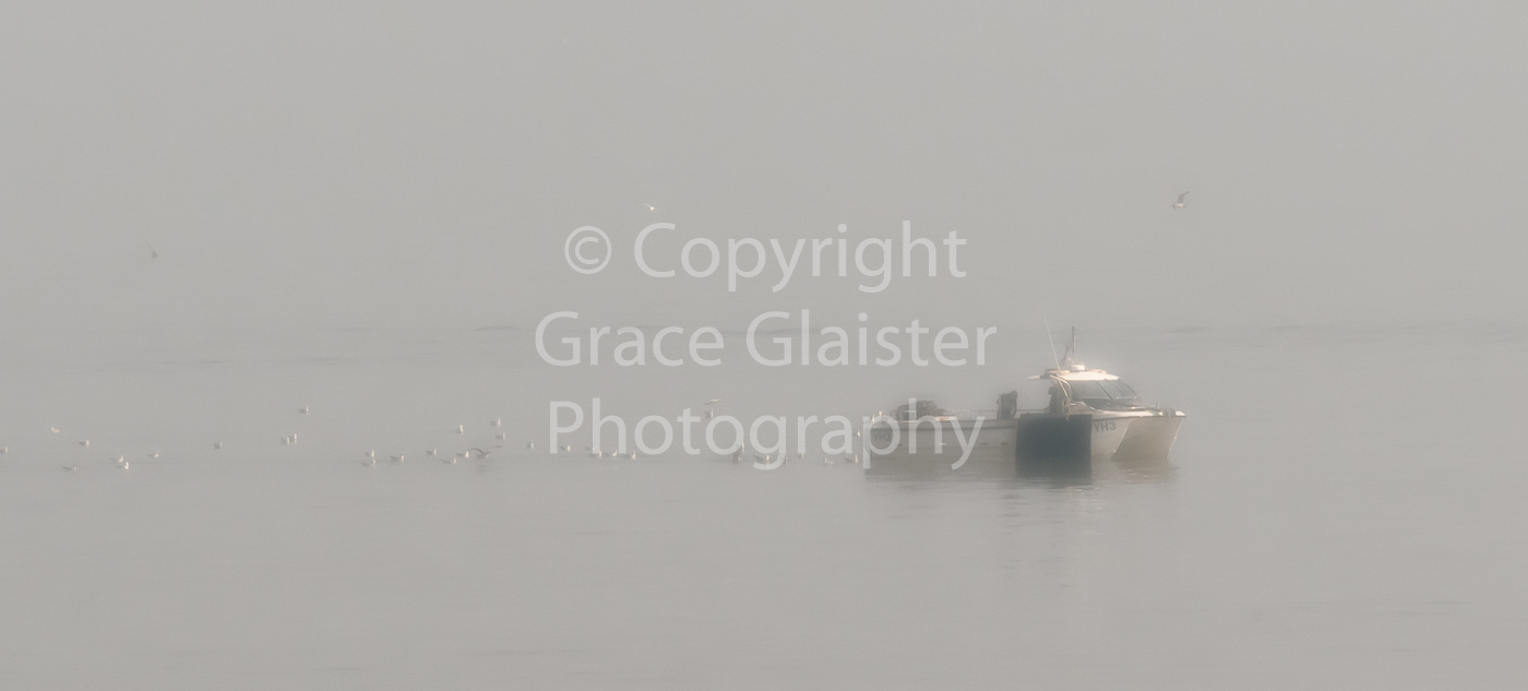 Fishing in the mist by Grace Glaister