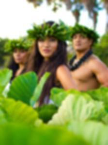 Island Breeze Luau Hawaii | kona luau