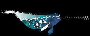 Logo_SEA-UNICORN_rvb_500dpi.png