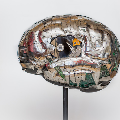 The Brain Project, Toronto 2018, private collection.