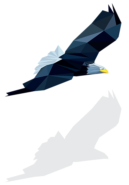 image appears from left vibrant colored geometric bald eagle flying and casting shadow on webpage
