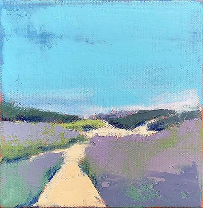 Lavender Dunes