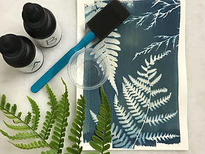 Cyanotype Art Box 1