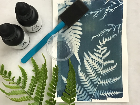 Art Box: Cyanotypes