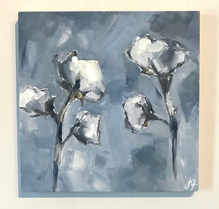 Cotton Bloom #2
