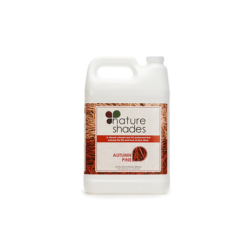 Autumn Pine 1 Gallon
