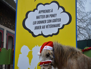 Rendez-vous Dimanche 8 Février à l'hippodrome de Vincennes pour de nouvelles animations!