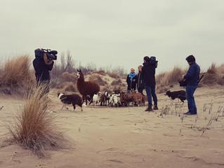 ECOZOOTIDIENNE : Nouveau tournage pour les animaux d'ECOZOONE !