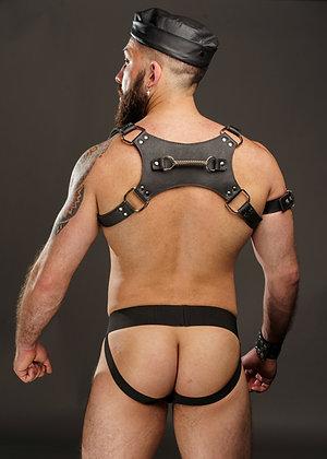 Harness Hermes II