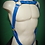 Thumbnail: Harness Comodus