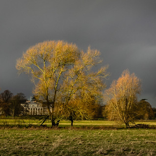 Shugborough Autumn Scene