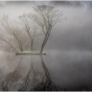 Foggy morning Bracebridge