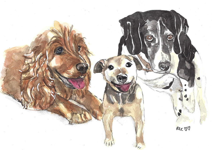 Lucy, Nipper and Ben