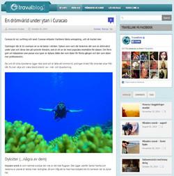 Scuba Diver Floating