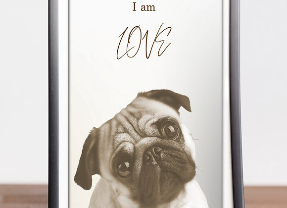 "PUG | ""I AM"" Love