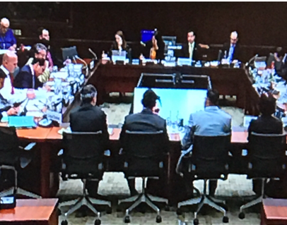 Parliamentary Committee.png