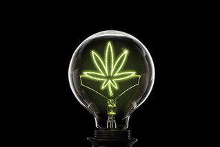 Seeking Solutions for Patient Safety in the Cannabis Space - Marissa Fratoni RN