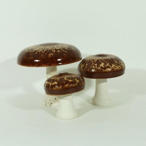 Set paddenstoelen (groot) - parasolzwam