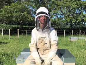 Beekeeping Scholarship Opens to Applicants