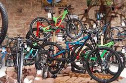 magasin_de_vélo.jpeg